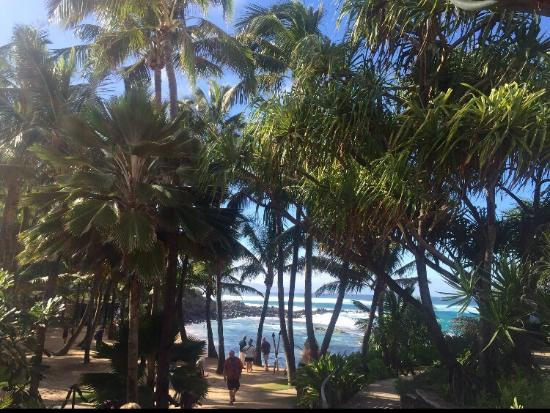 Paia, هاواي: photo9.jpg