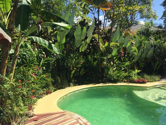 Ojochal, Costa Rica: photo0.jpg