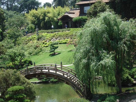 Gardens Picture Of The Huntington Library Art Collections And Botanical Gardens San Marino