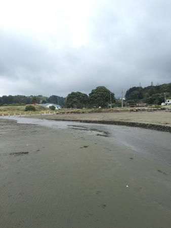 Whakatane, Νέα Ζηλανδία: photo1.jpg