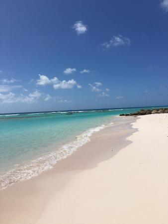Christchurch, Barbados: Worthing Beach, Barbados Jan. 2016. Make sure you look out for sea turtles. The water is clear a