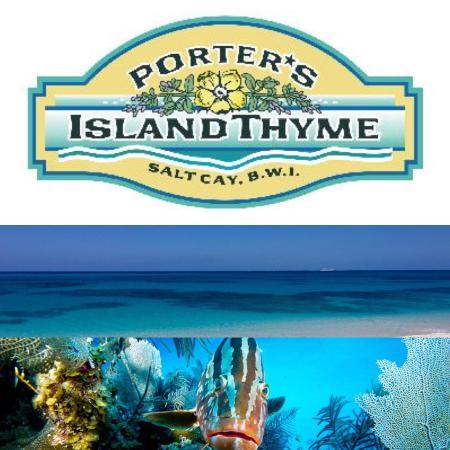 Salt Cay: Porter's Island Thyme