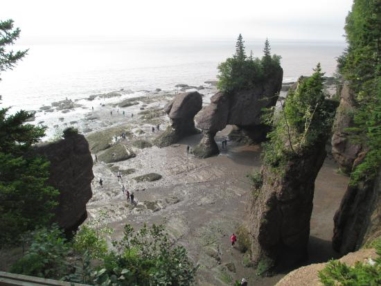Hopewell Cape, แคนาดา: taken from viewing platform before descent to the ocean floor