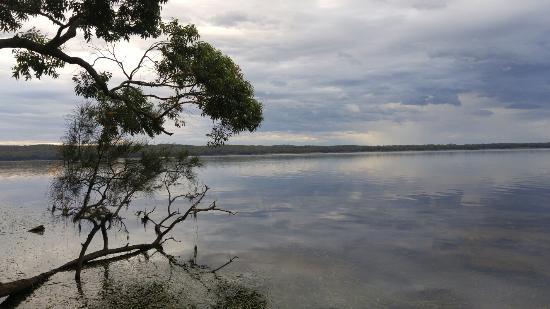 Sanctuary Point, Australia: 20160201_071053_large.jpg