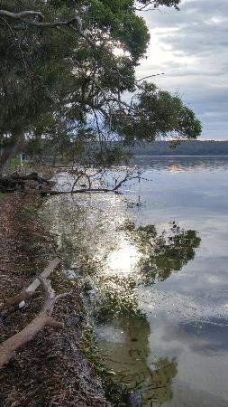Sanctuary Point, Australia: 20160201_071556_HDR_large.jpg