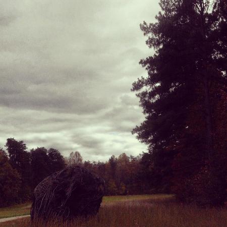 Clermont, KY: Bernheim Forest