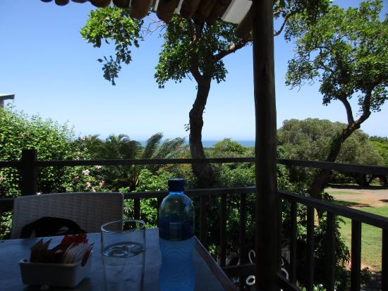 pleasant experience review of the fat cat mtunzini south africa rh tripadvisor co za