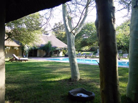 Addo, Sydafrika: The main house pool (there is another at the stable cottages)