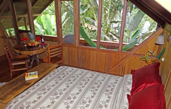 Casa Divina Lodge : Matrimonial Room with view of the cloud forest