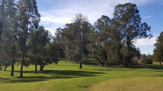 Blacklake Golf Resort Picture