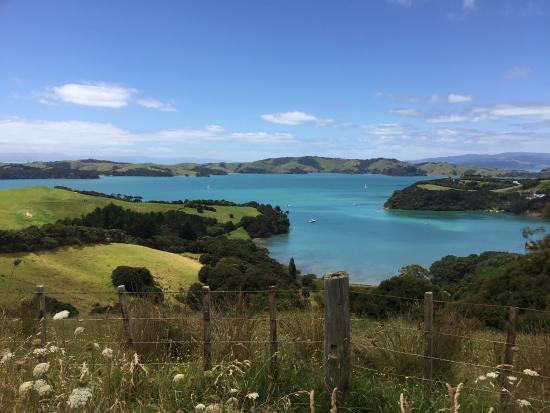 Waiheke Island-billede