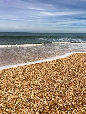 cinnamon beach at ocean hammock beach resort cinnamon beach at ocean hammock beach resort   picture of cinnamon      rh   tripadvisor