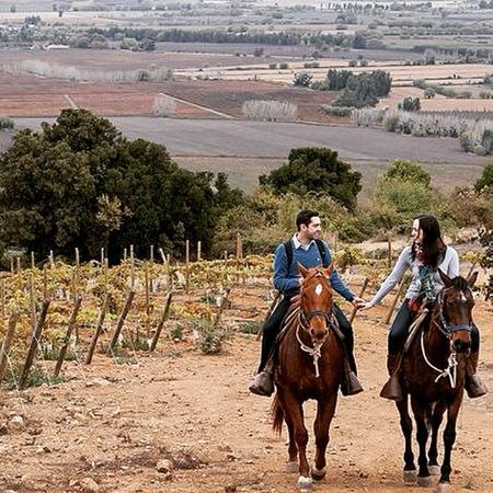 O'Higgins Region, Chile: horseback riding Colchagua