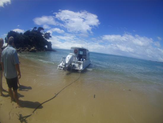 Sea Limousines: Our boat
