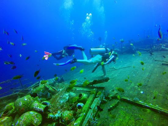 Dive Inn Bali