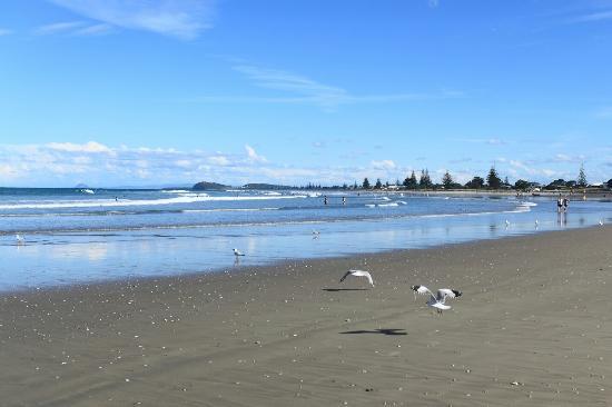 Waihi Beach, นิวซีแลนด์: Orokawa Bay