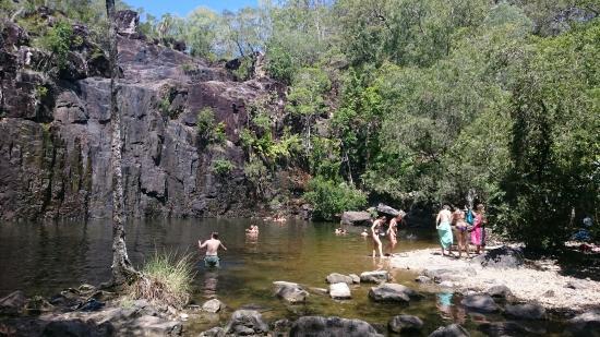 Proserpine, Australia: DSC_1955_large.jpg