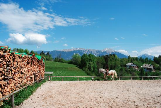 Zgornje Gorje, Slowenien: Outdoor riding arena in the late spring