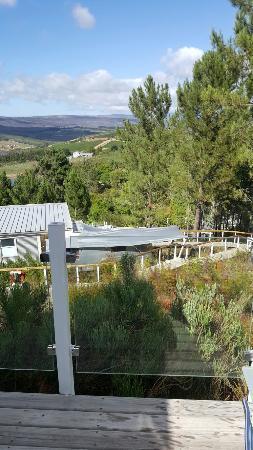 Overberg District, África do Sul: 20160127_093054_large.jpg