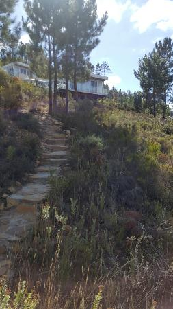 Overberg District, África do Sul: 20160127_093419_large.jpg