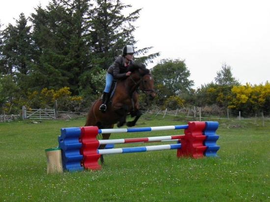 ‪‪Brora‬, UK: one of our horses doing a jump lesson‬
