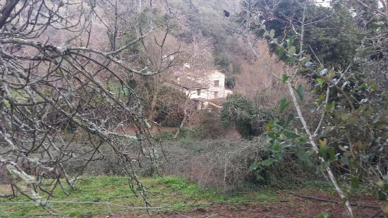 Refugio Los Molinos