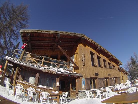 Villarodin-Bourget, Fransa: En redescendant en ski sur la Norma, une petit pause au grizzli !