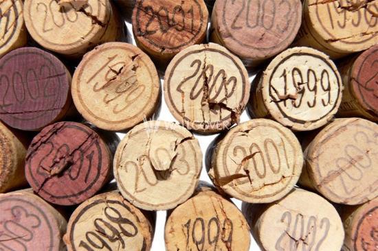 Icici, Croazia: wine shop soon