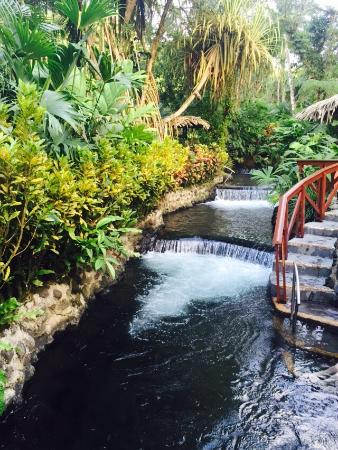 Tabacon Grand Spa Thermal Resort: photo5.jpg