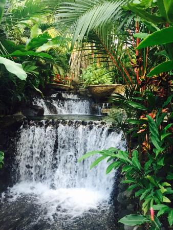 Tabacon Grand Spa Thermal Resort: photo7.jpg