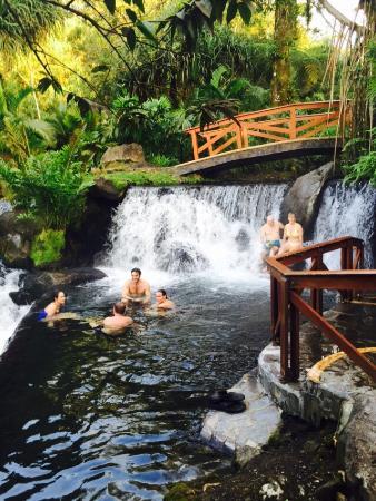 Tabacon Grand Spa Thermal Resort: photo8.jpg