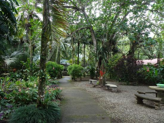 Tree of Life Wildlife Rescue Center and Botanical Gardens