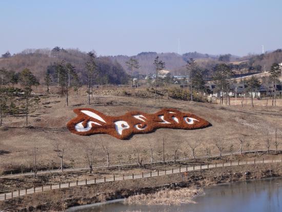 Foto de Pyeongchang-gun