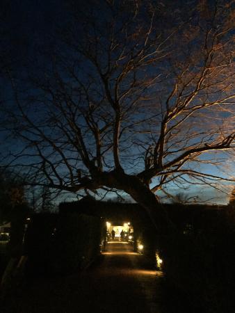 Levernois, Frankrike: Jardin à la tombée de la nuit