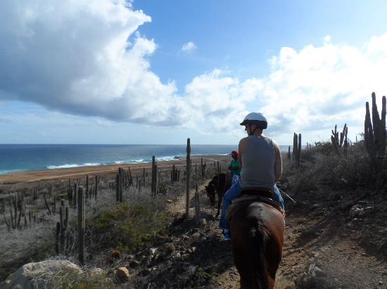 Paradera, Aruba: On the trail!