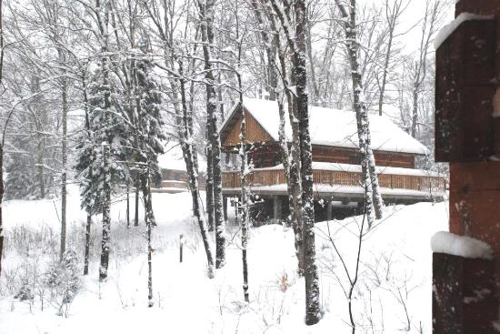 Oxtongue Lake, Canadá: Black-Capped Chickadee Cabin
