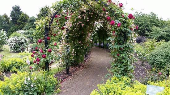 Royal National Rose Society Gardens Photo