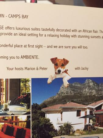 Ambiente Guest House : photo0.jpg