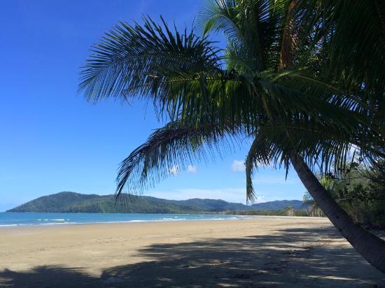 Foto de Palm Cove