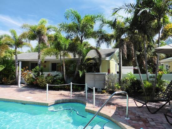 An Island Getaway at Palm Tree Villas: Great pool