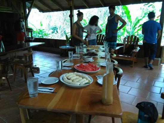 Osa Peninsula, Κόστα Ρίκα: IMG_20151210_154340_large.jpg