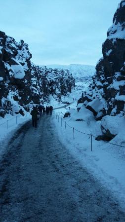 Iceland Horizon - Golden Circle Tour: 20160129_101147_large.jpg