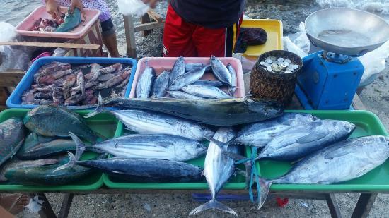 Sabang, Filippine: 20160201_161058_large.jpg
