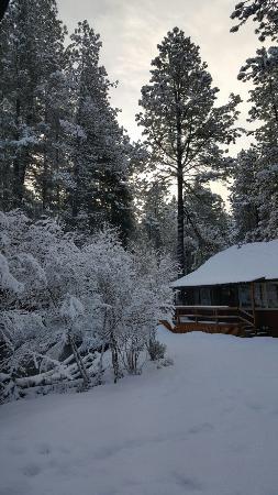 Camp Sherman, Όρεγκον: 20160130_083404_large.jpg
