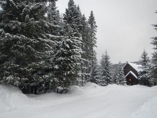 Saint-Faustin-Lac-Carre-bild