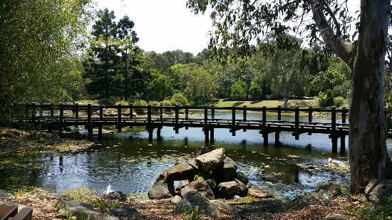 Benowa, Αυστραλία: 20151104_115053_large.jpg