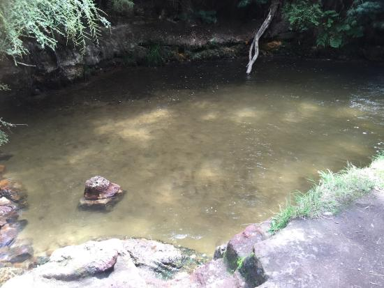 Kerosene Creek: photo2.jpg