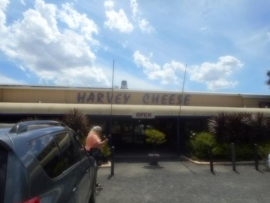 ‪Ha Ve Harvey Cheese‬