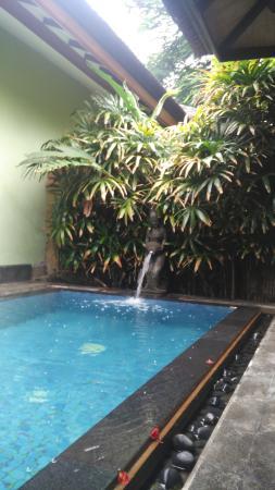 Pool - Rama Beach Resort and Villas Photo