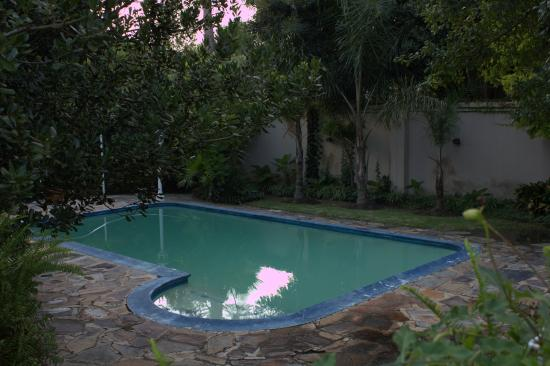 Randburg, Afrika Selatan: swimming pool in Tropical Garden